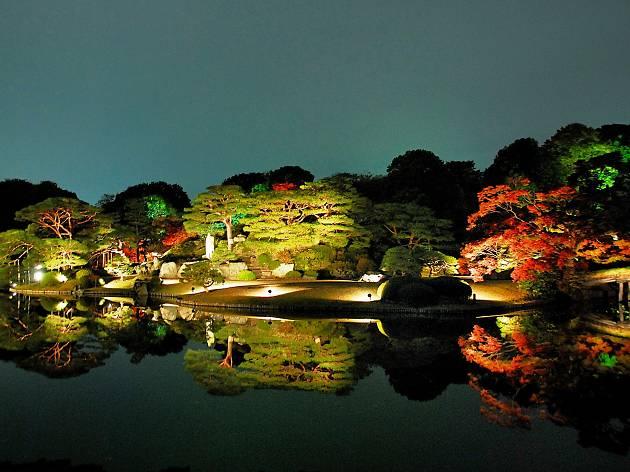 紅葉と大名庭園のライトアップ