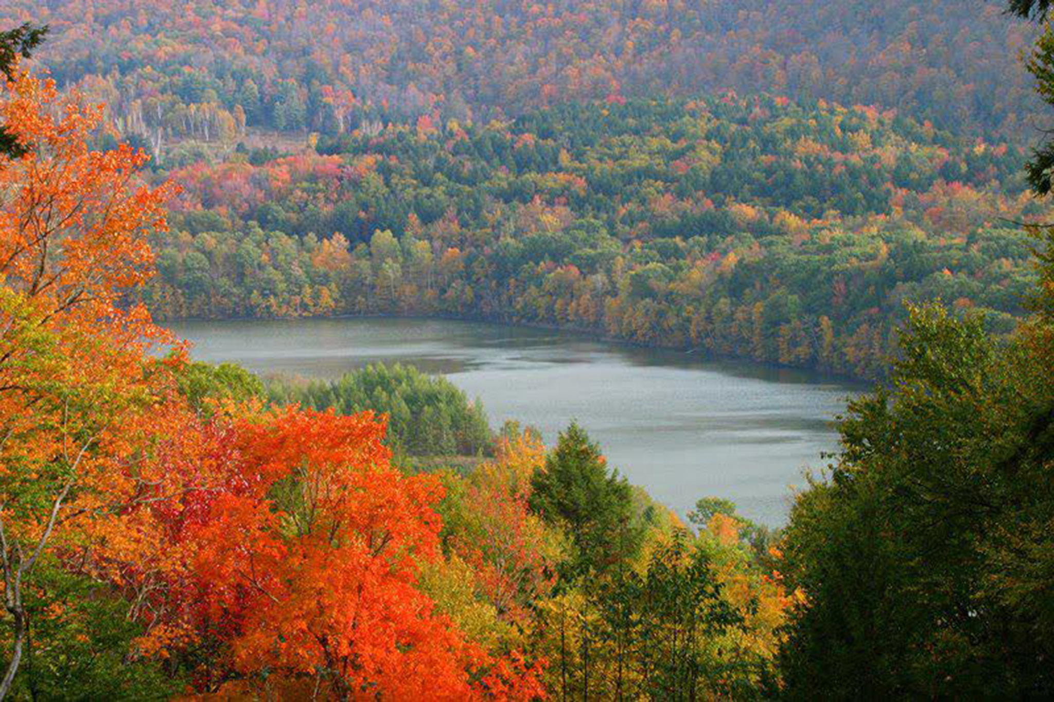 The 10 best places to go leaf peeping in the Catskills
