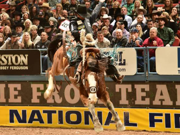 Grand National Rodeo