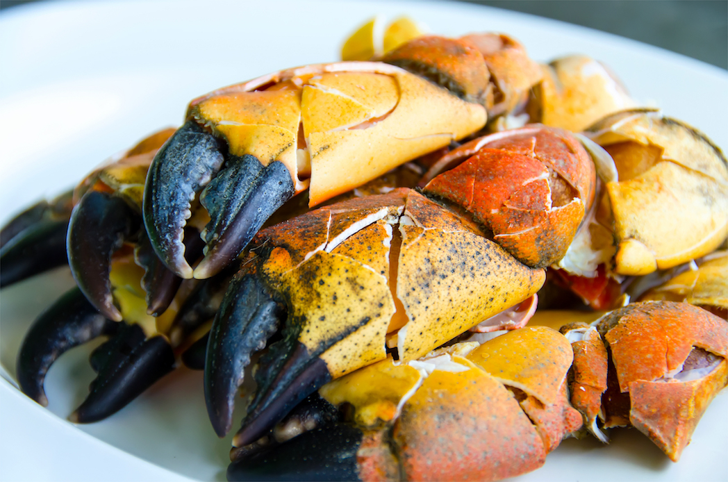 The best places to devour fresh stone crabs in Miami