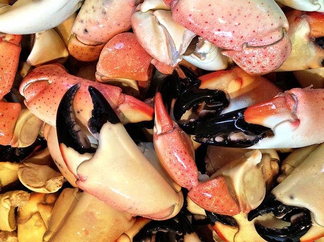Stone crab claws Miami