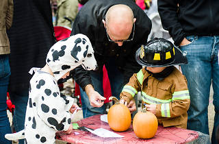 Tricks and Treats at Le Carrousel