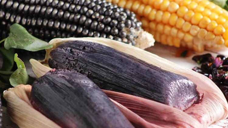 Feria del maíz, frijol y amaranto