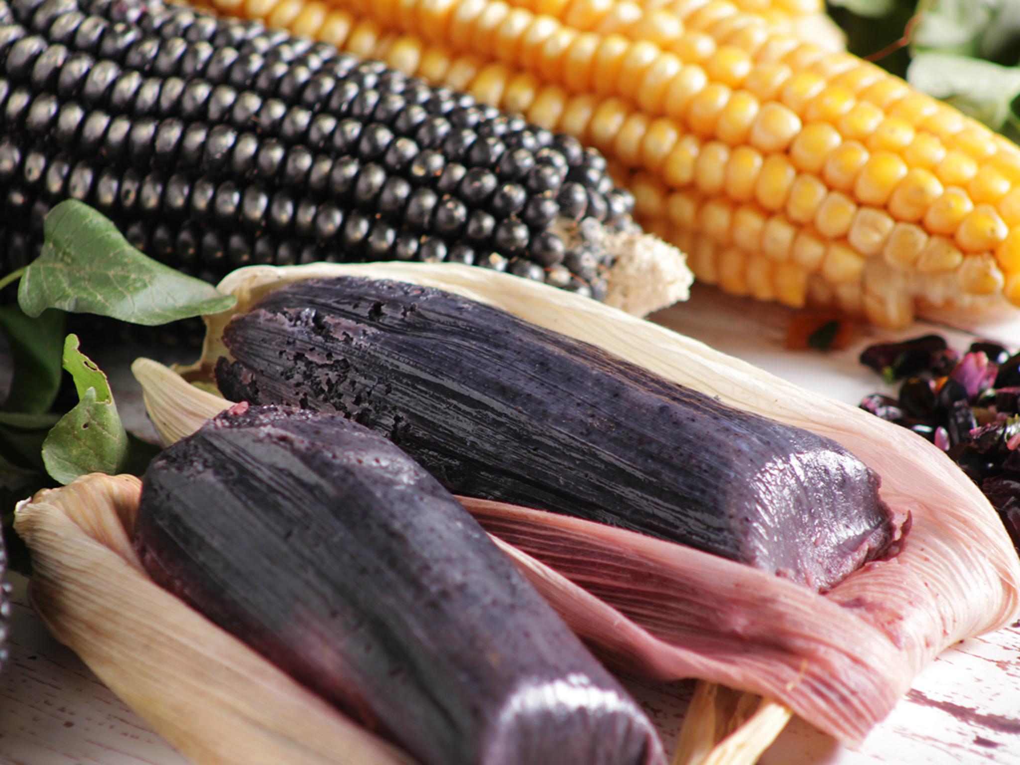 Feria Gastronómica del Elote en Milpa Alta 2019