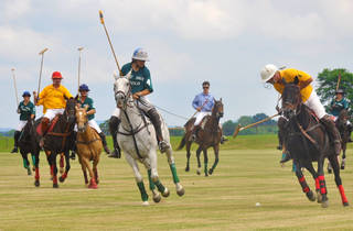 World Polo Championship Sydney