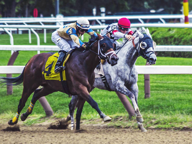 Generic horse racing