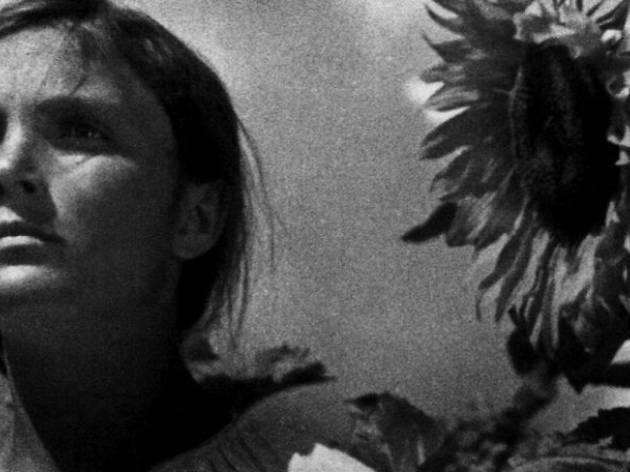 Alexander Dovzhenko. Trilogía de la guerra