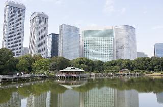 Hamarikyu Gardens | Time Out Tokyo