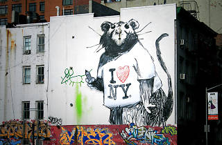 NYC has the second-worst rat problem in the country