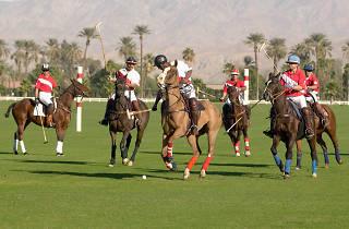 Juego de Polo, caballos, jugadores, polo