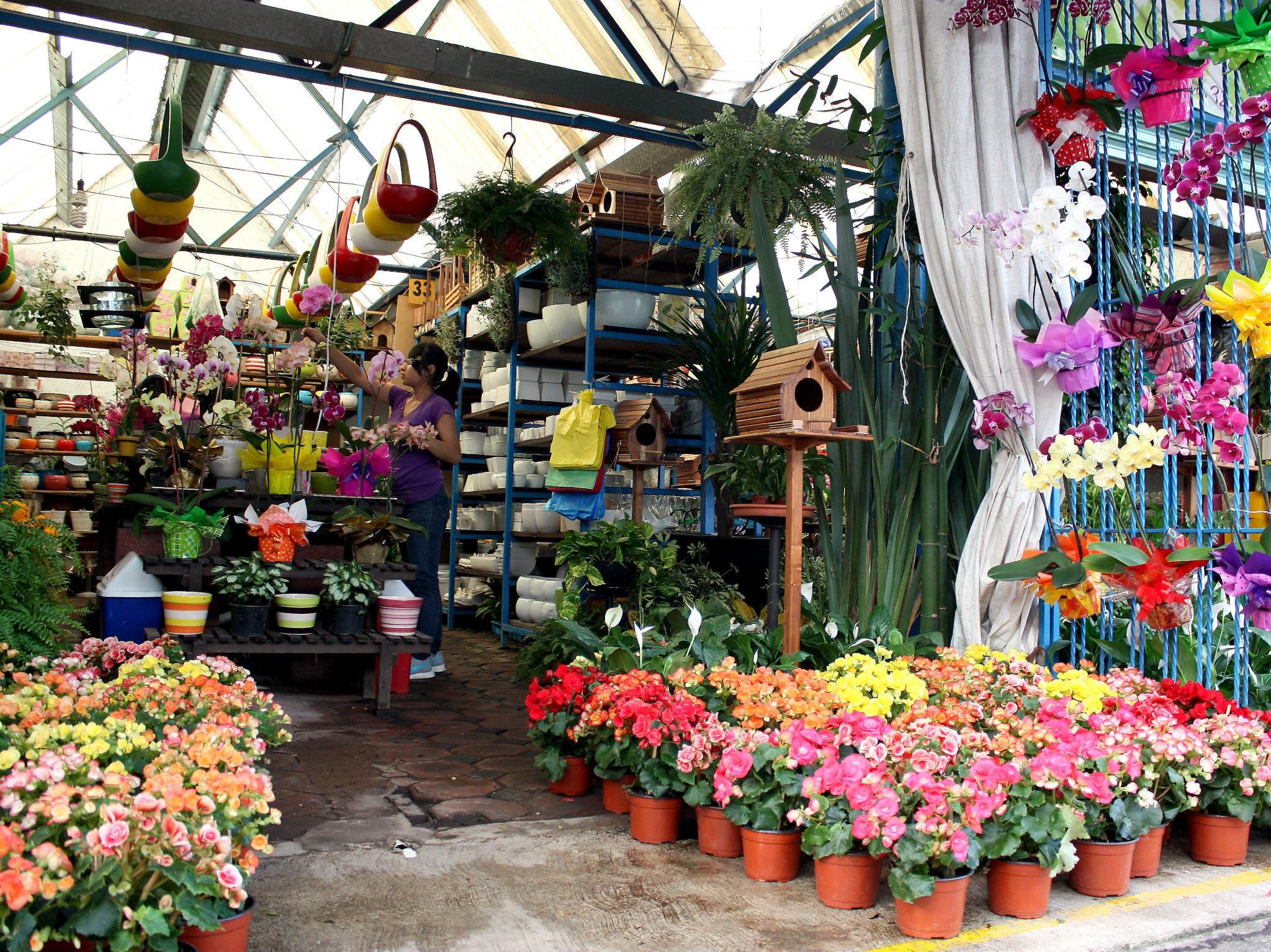Mercado de Cuemanco