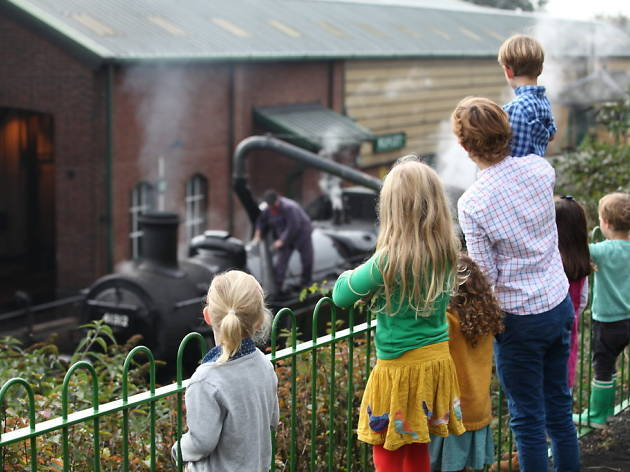 Steam train on the Watercress Line - autumn kids day trips