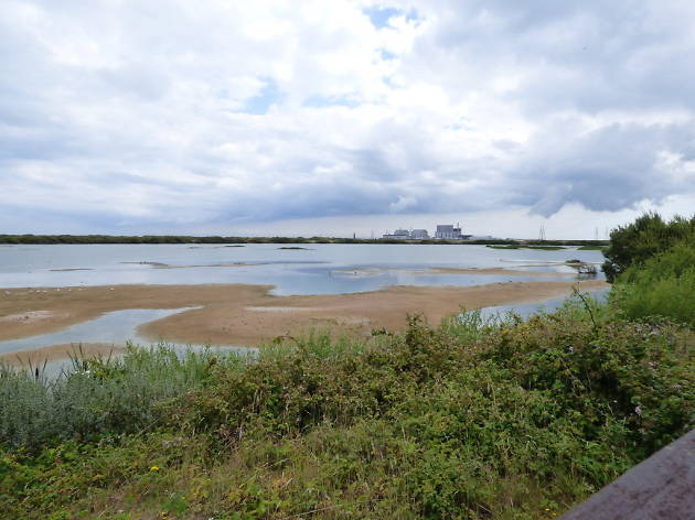 RSPB Dungeness reserve - autumn day trips for kids