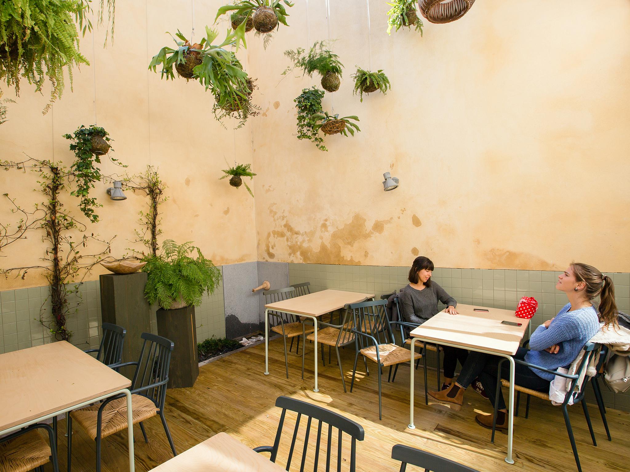Noshi Coffee - Esplanada