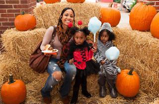 south street pumpkinfest