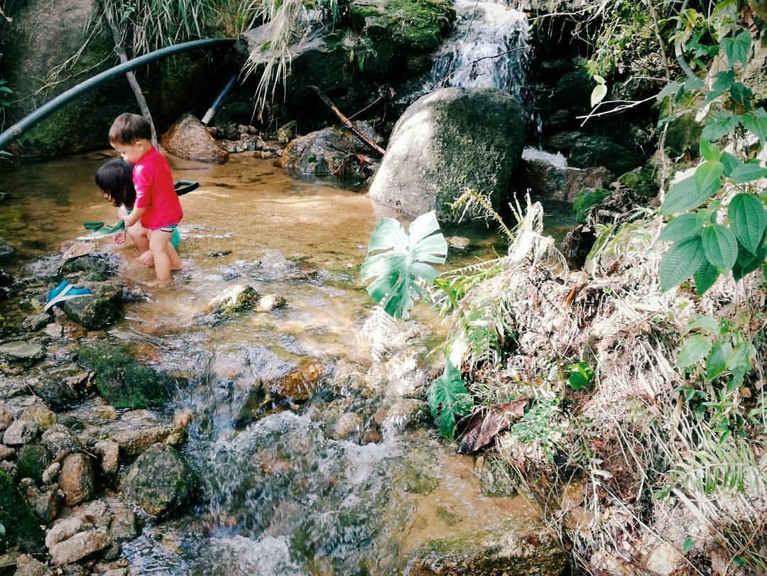 Permaculture Perak