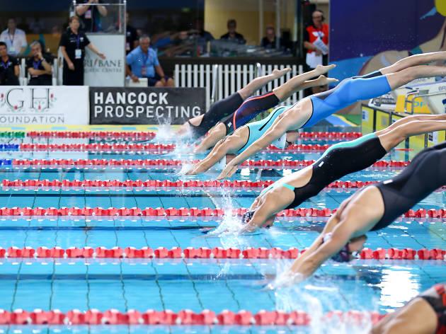 Diving Imagery - Swimming Australia