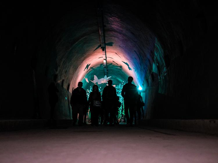 Go underground at Grič