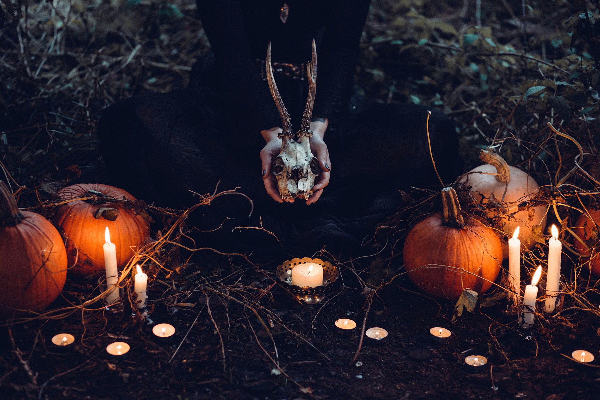 Halloween parties and events in Austin