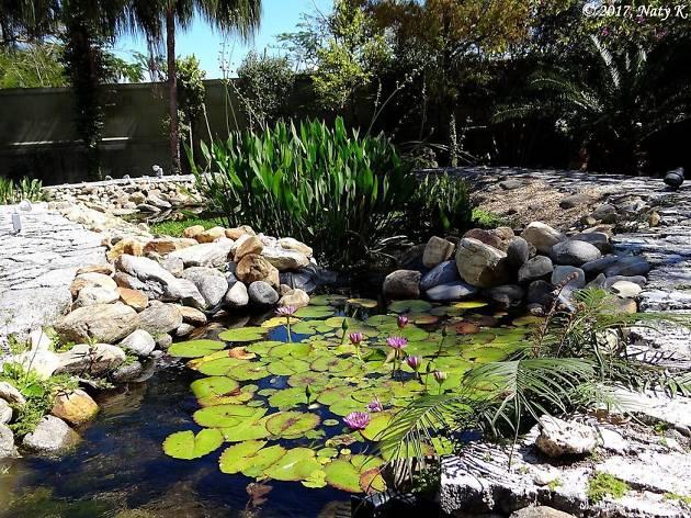 Ichimura-Miami Japanese Garden