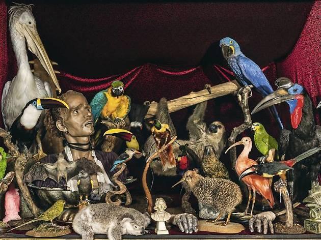 14 really weird London museums