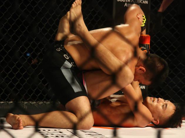 Just MMA: MMA Challenge