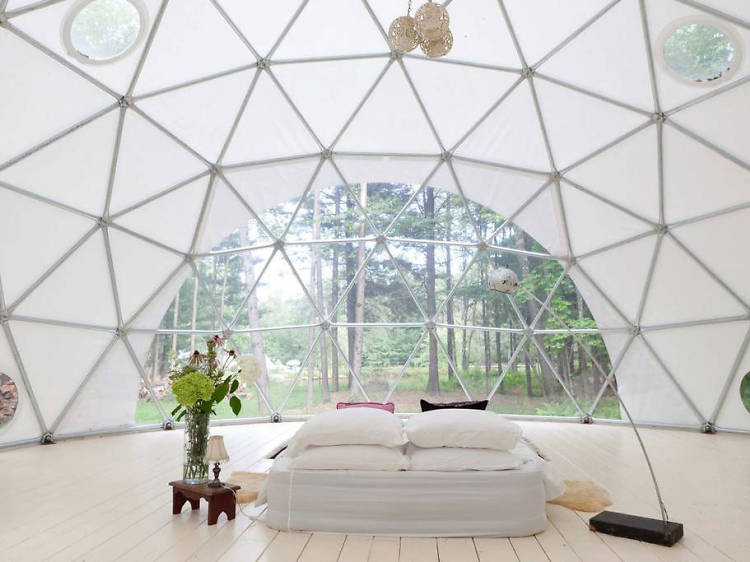 Woodridge, NY: The glamping dome