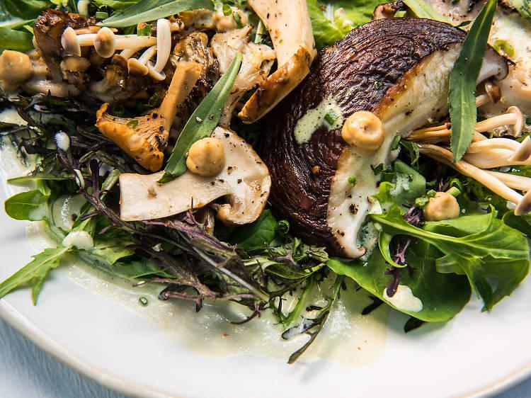 Wild mushrooms at ABCV
