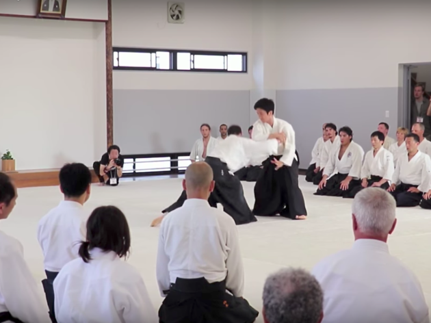 LTA 2017: Aikido (screen shot)