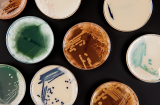 Superbugs: The fight for Our Lives