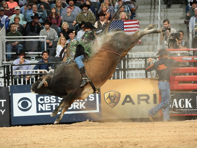 Professional Bull Riders world finals