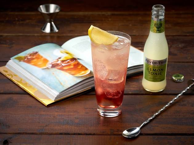 Fever-Tree Gin and Tonic Pairing Masterclass