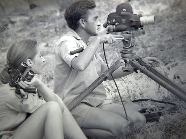Jane Goodall, Brett Morguen, Los Cabos Film Festival