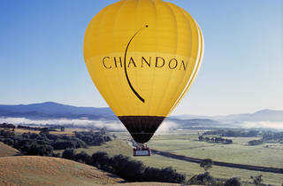 Global Ballooning Yarra Valley