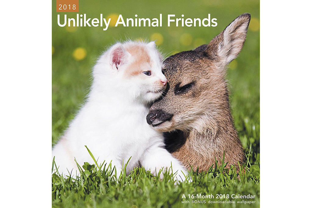 For the animal lover: Mead Unlikely Animal Friends 2018 wall calendar