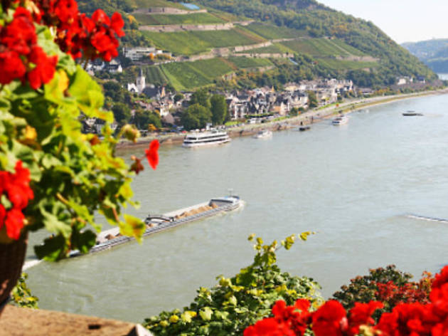 Frankfurt tours- Rhine Valley trip and Rhine River cruise