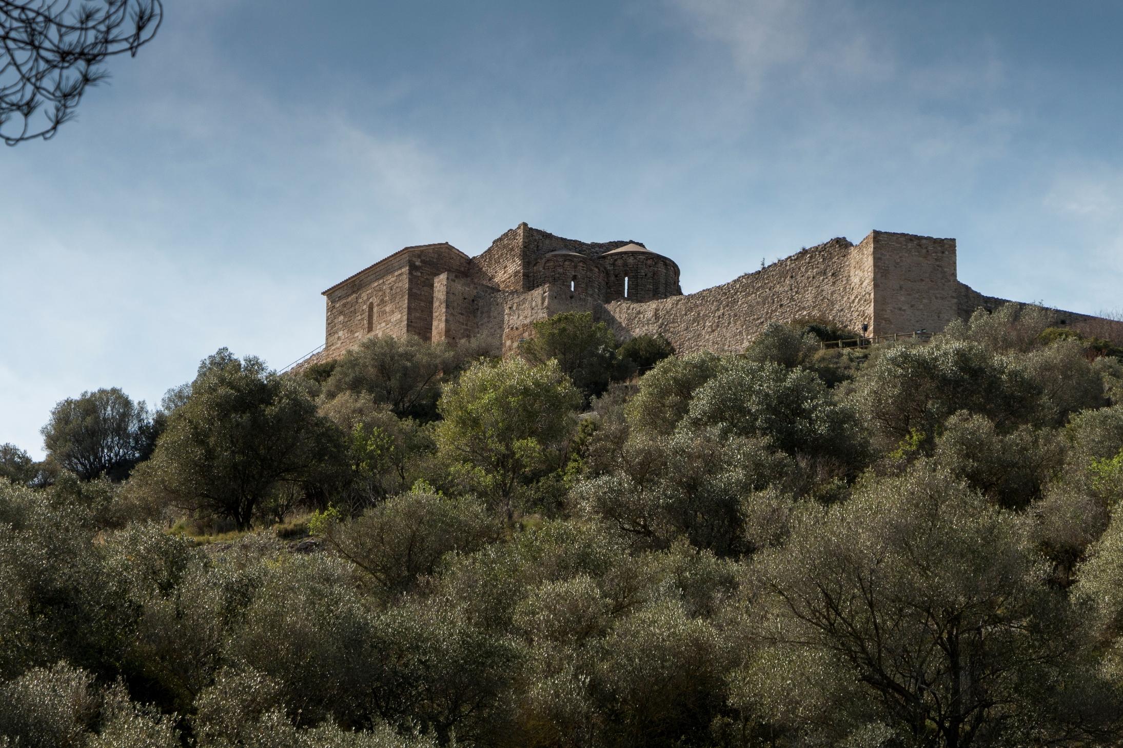 Escapada a l'Anoia: castells, globus i traginers