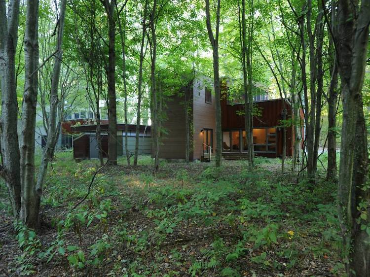 Rent a cabin in the woods