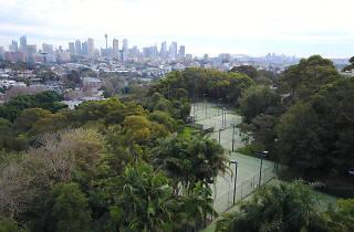 Tennis Courts in Paddington