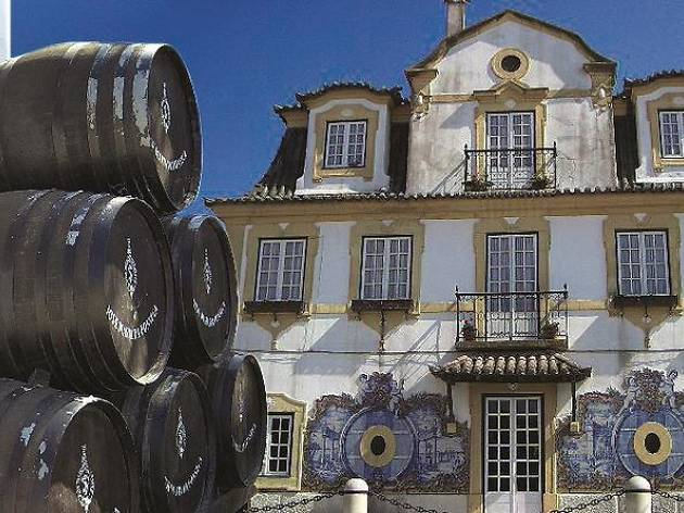 Wine tours- Arrabida and sesimbra day trip