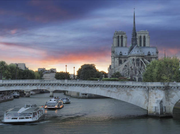 Dinner cruises- Cruise, Paris illuminations and dinner on the Champs-Elysees