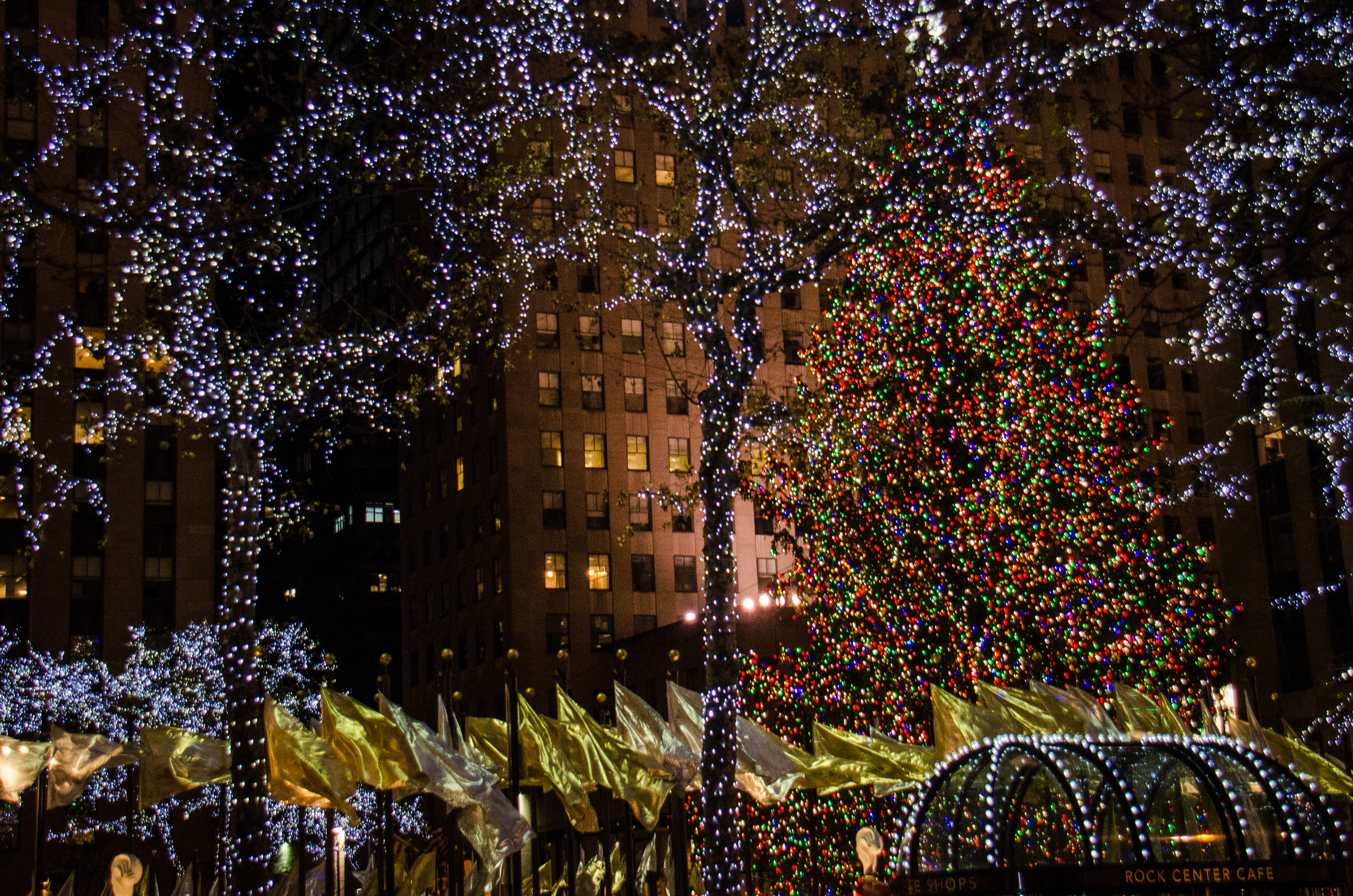 Best Christmas lights NYC has to offer plus festive attractions
