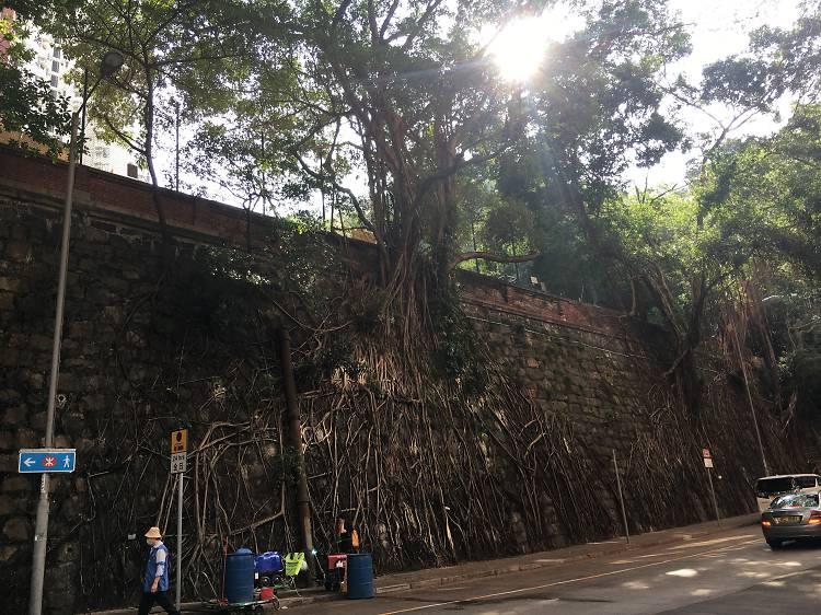 學者帶團:長春社文化古蹟資源中心