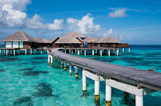 Maldives resort: Coco Palm Bodu Hithi