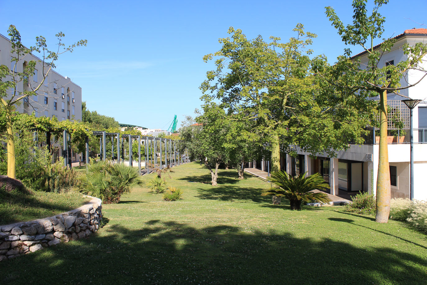 Jardim Prof. António de Sousa Franco