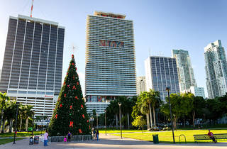 Holiday tree lighting at Bayfront Park