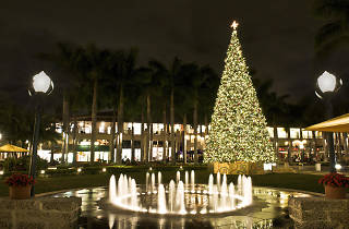 Holiday tree lighting at Shops at Merrick Park