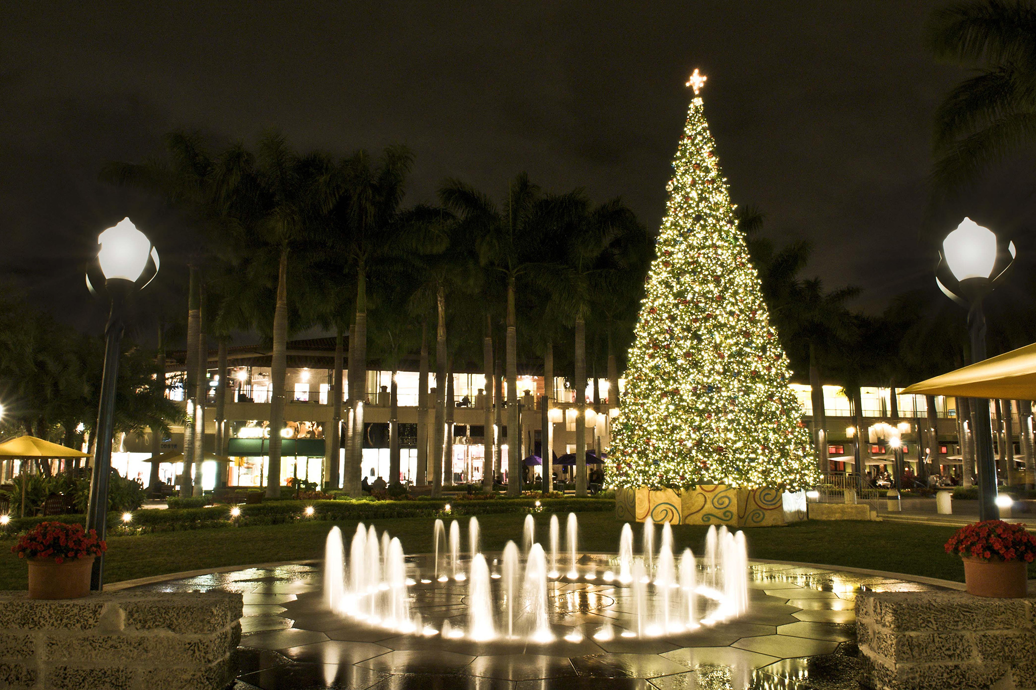 christmas tree at shops at merrick park