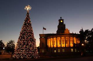 Coral Gables City Hall Christmas tree
