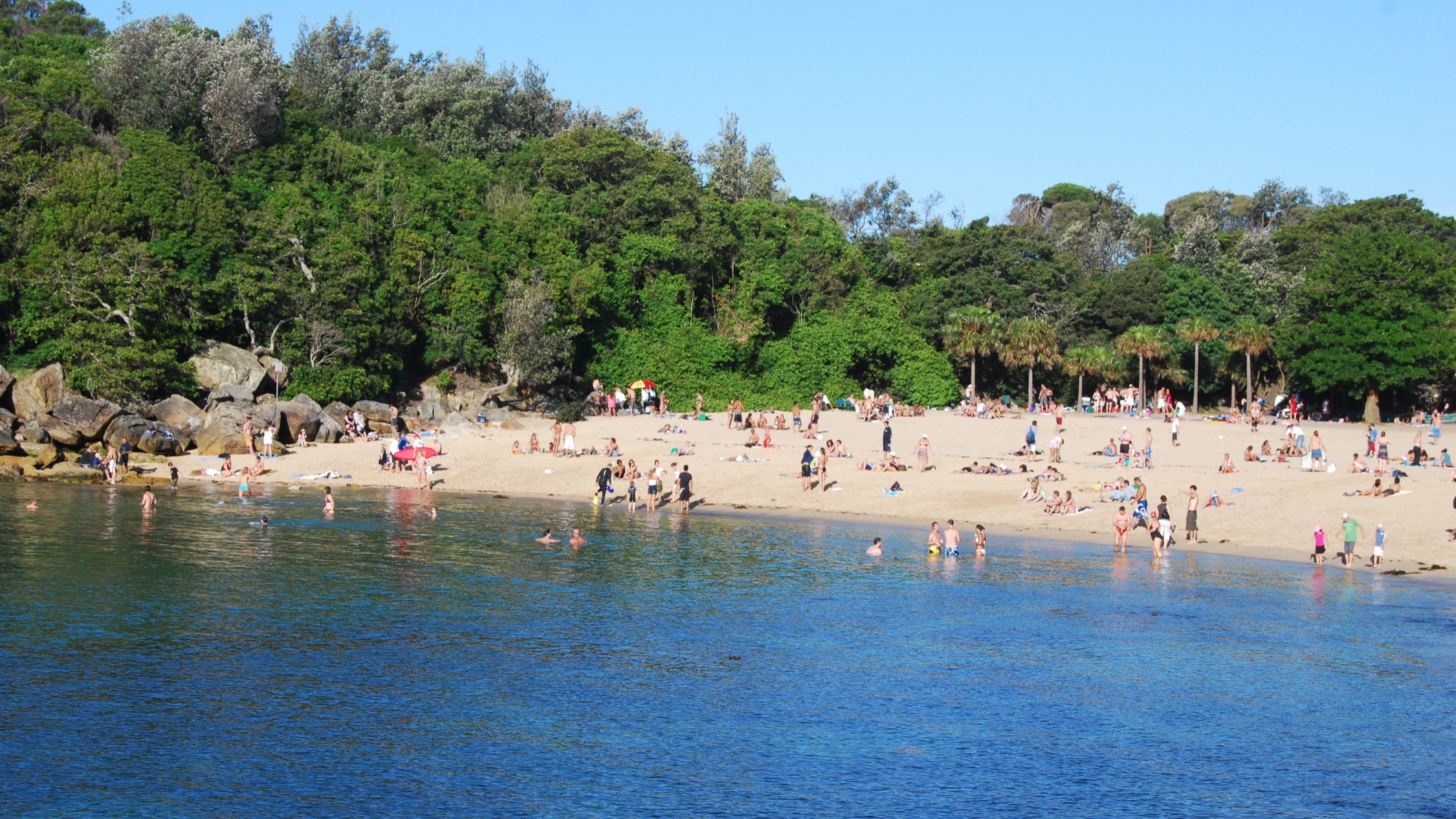 People on the shore at Shelly Beach
